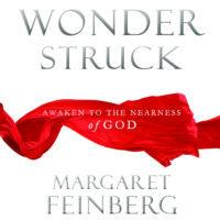 Wonderstruck (Margaret Feinberg)